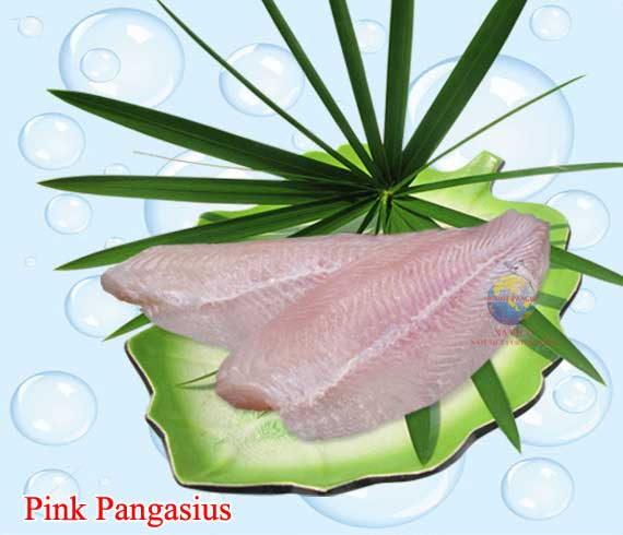 Pink-pangasius_1